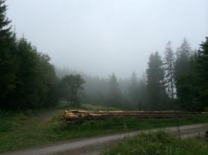 Hüttle_EndeJuni33