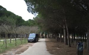 Spanienwinter2014_15011