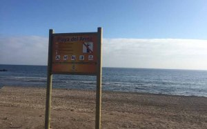 Playa del Aroz